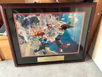 Sky Diving photography with brown wooden frame Burr Ridge, 60527