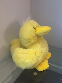Big plush duck. New without tags Washington, 20009