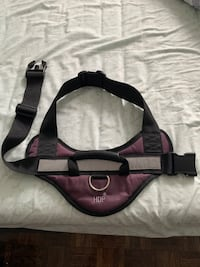 Padded No pull dog harness Aurora, L4G 3L9