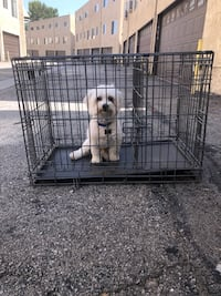 Potty training puppy apartment crate/cage Los Angeles, 91504