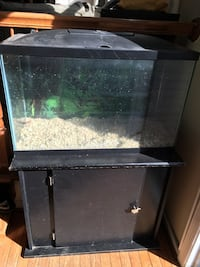 30 Gallon Fish tank, stand, & all necessities Fairfax, 22033