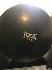 Workout ball - pump included  Mississauga