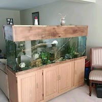 6 foot 125 gallon fish tank and stand. London, N5Y 2N3