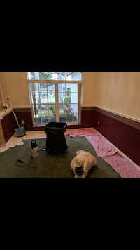 Sullys Wallpaper Removal Lorton, 22079