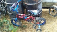 toddler's red and blue training bike