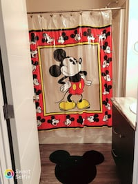 Mickey Mouse bathroom decoration Edmonton, T5X 0G1