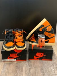 Shattered backboard 3.0 DS AND Worn once TAKE YOUR PICK Arlington, 22202