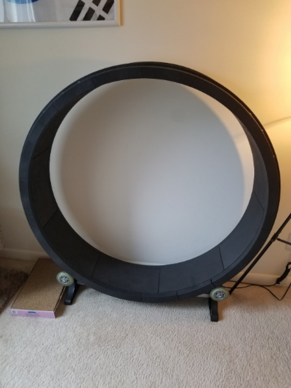 One Fast Cat Exercise Wheel (barely used)