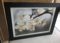 white and pink flower painting with black wooden frame Las Vegas, 89178
