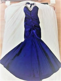 PROM DRESS GORGEOUS HOMECOMING PROM DRESS Riverview, 33578