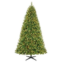 7.5' Kennedy™ Quick Set® Pine Christmas Tree with Clear Lights 多伦多, M8Y 3G1