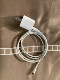 iPhone charger authentic
