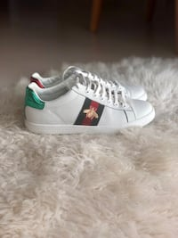Authentic Gucci sneakers  Tallinn