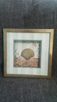 Framed shell wall decor Toronto, M4P 1Z2