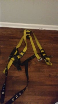 yellow and black harness