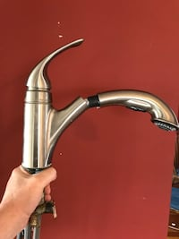 Stainless steel faucet with pull out Algonquin, 60102