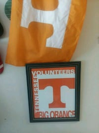 Large Tennessee Volunteers Big Orange picture Knoxville, 37919