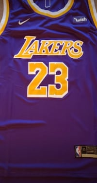 Lebron James laker jersey Mississauga, L5M 1N7