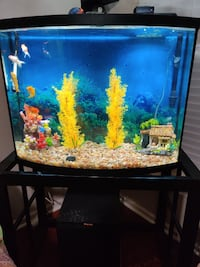 40 gal. Front Bow Aquarium and Stand With All Accessories ,$170 or OBO