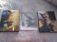 3 Cat Pictures - 2 Photo Canvas Prints and 1 Photo