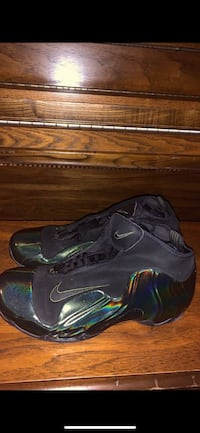 Nike Flightposites size 9.5 Washington, 20017