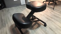 Sleekform ergonomic chair Columbia, 21044