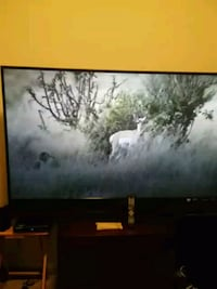 "65"" Mitsubishi TV w/remote.  Katy, 77449"