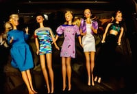 1966 Barbies Wauconda, 60084