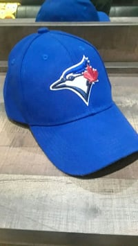 blue and red fitted cap Toronto, M8V 1R3