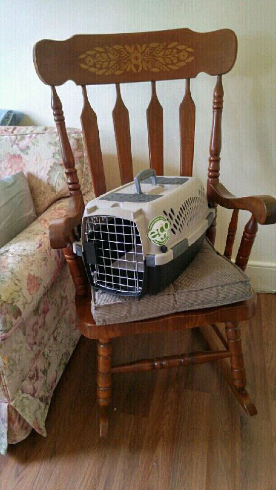 Practically new pet carrier! - Saint Catharines