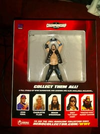 WWE AJ Styles Champion Collectible Virginia Beach, 23462