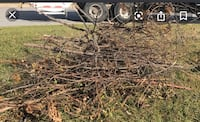 Yard Waste Removal and Handy Man  Nashville