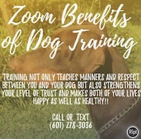 dog training Madison, 39110