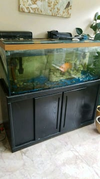 black framed clear glass fish tank Damascus, 20872