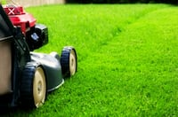Lawn mowing (Front & Back) Ottawa