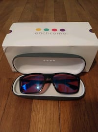 Indoor Enchroma Glasses with Ray-Ban Frames Glen Burnie, 21060