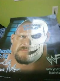 Stone Cold Steve Austin picture  Linthicum Heights, 21090