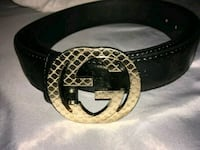 black and brown Gucci belt Boston, 02119