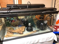 Reptile tank and a lot more. 4- heat lamps hides decorations 2- light bars what you see is what you get. Tank size 36L x 16H x 18W Islip, 11751