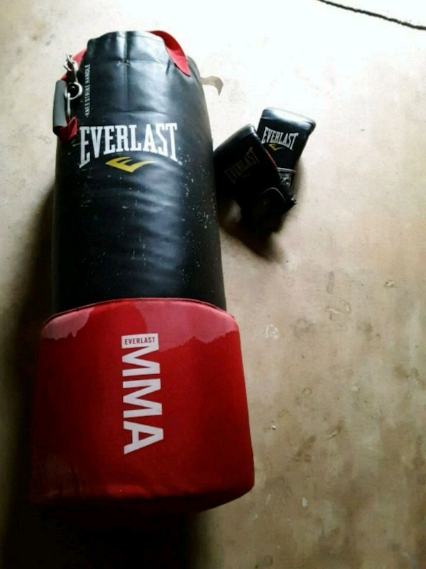 Everlast punching and knee bag
