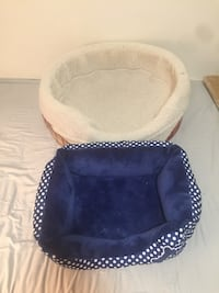 Pet beds $15 Firm both  Toronto, M9N 2S7