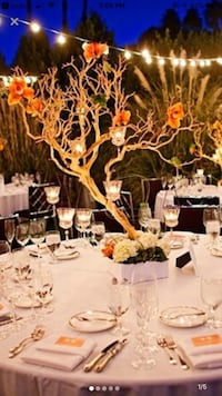 Manzanita branches wedding Toronto, M2N 0J8