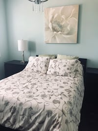 Full bedding & Matching pictures set (comes with fitted and flat sheet, 4 standard pillow shames, 2 Euro pillows) picture is 3ft x 3ft, 2 small square pictures included. This is for a double bed. Mattress is additional $50