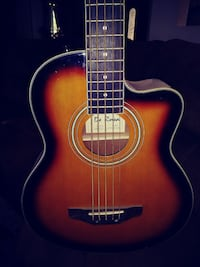 5 string acoustic/electric bass