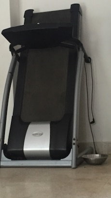 gray and black treadmill; stainless steel bowl