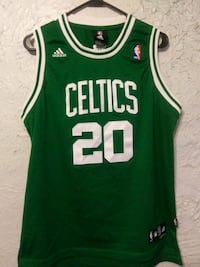 green and white Boston Celtics 33 jersey shirt Chaparral, 88081