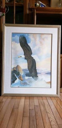 Beautiful  Soaring Eagle Picture, framed print Woodbridge, 22192