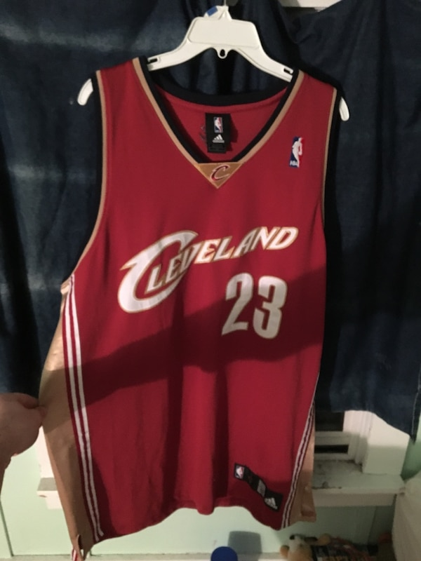 low priced e1c48 7060e Old school Lebron James jersey
