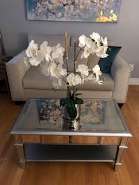 Gorgeous mirrored coffee table