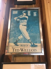 Busch Baseball Great Ted Williams memorabilia with gray metal frame Surf City, 28445